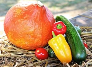 Kürbis und Paprika sind gesund bei Endometriose